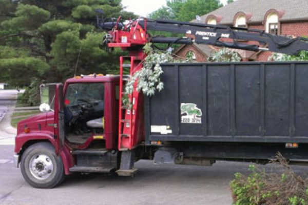 full-tree-waste-removal